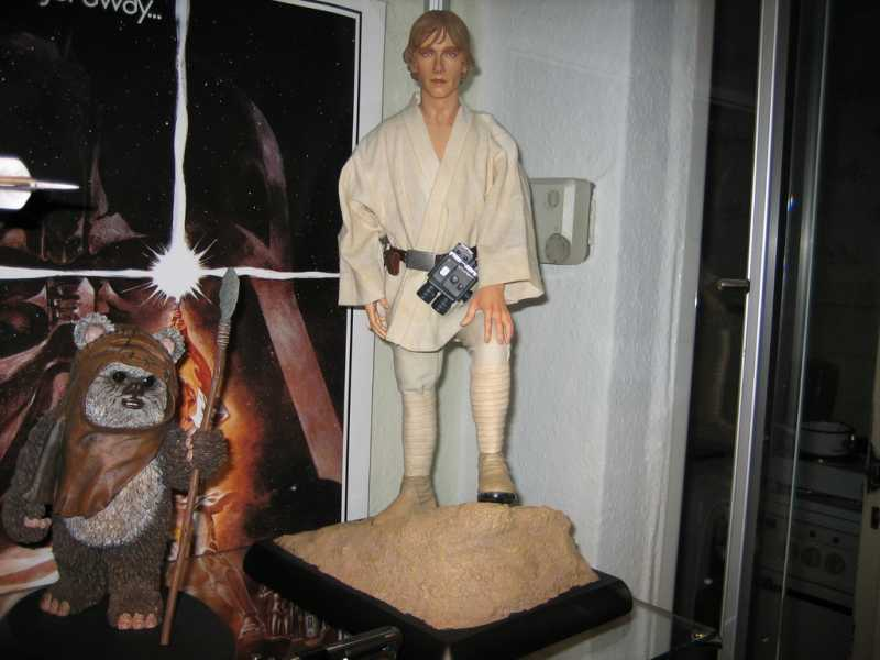 Luke Skywalker - A New Hope - Limited Edition